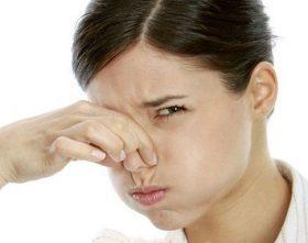 Remedios-caseros-para-los-malos-olores-en-el-hogar-280x221-3565415.jpg
