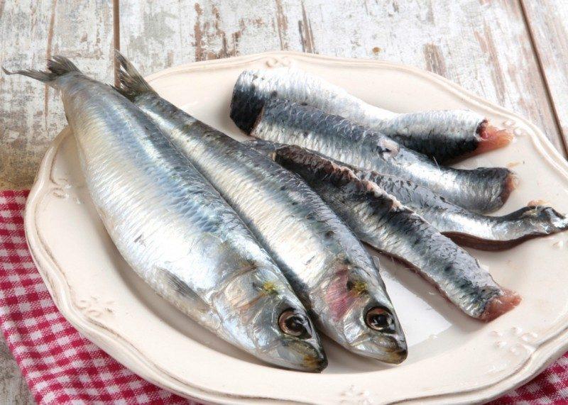 propiedades-y-beneficios-de-la-sardina-800x571-3483896